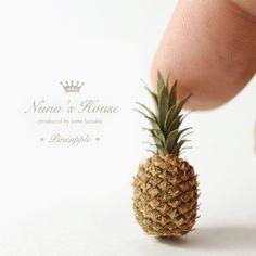 2017 May, Miniature pineapple♡ ♡ By Nunu's House