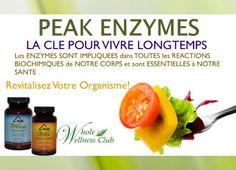 Peak Enzymes