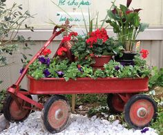 Now He Knows!  LOL, mobile planter, wagon full of joy!