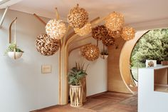 Our beautiful steam bent wood Pendants, showcasing a great example of Cluster Lighting at the Raymond Blanc Installation. Lamp Design, Bent Wood, Wood Light, Wood Chandelier, Plywood House, House Inspiration, Home Decor, How To Bend Wood, Master Bedrooms Decor