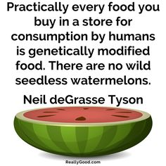 Practically every #food you buy in a store for consumption by humans is genetically modified food. There are no wild seedless watermelons. Neil deGrasse Tyson #quote