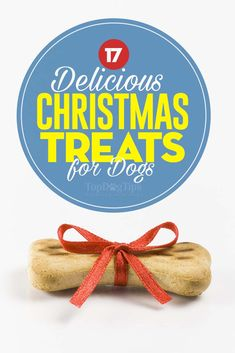 Looking for a delicious way to treat your dog this holiday season? The best Christmas dog treats will keep your pet happy and healthy. It's much better to feed one of the treats on this list than it is to share table scraps from your holiday meal. Best Treats For Dogs, Diy Dog Treats, Homemade Dog Treats, Dog Treat Recipes, Healthy Dog Treats, Dog Food Recipes, Christmas Dog, Christmas Treats, Holiday Treats