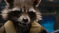 Bradley Cooper voicing Rocket in Guardians of the Galaxy