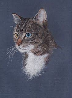 Animal pastels on pinterest pastel paintings pastel for Bett zeichnung