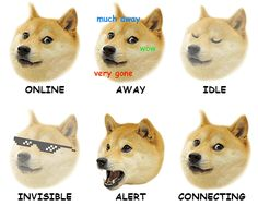 Shades of doge