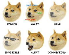 227 Best Doge Meme Dog Memes Images Funny Images Funny Animals