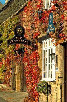 Het is herfst in Groot-Brittannië! Geniet samen met het gezin van een knusse herfstvakantie in bijvoorbeeld Engeland. #herfst #vakantie #Engeland
