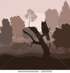 Great-Grey Owl, Strix Nebulosa, Finland, Winter Stock Photo 150211718 : Shutterstock