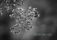 I love black and white images - they are beautifully timeless and allow you  to see the world in a completely different way. Although there are no hard  and fast rules about what makes a good black and white image, here are the  things that I watch out for if I am looking to convert the image into black  & white.
