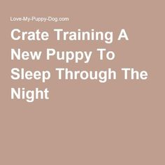 Pupy Training Treats - Crate Training A New Puppy To Sleep Through The Night Pet Accessories, Dog Toys, Cat Toys, Pet Tricks - How to train a puppy? Puppies Tips, Best Puppies, Puppy Training Tips, Crate Training, Potty Training, Diy Dog Crate, Dog Potty, Sleeping Through The Night, New Puppy