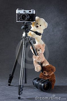 Photo about Camera and group of teddy bears isolated on grey background. Image of fluffy, childhood, curiosity - 8531338 Giant Teddy Bear, Cute Teddy Bears, Tatty Teddy, Love Bear, Big Bear, Teddy Hermann, Teddy Bear Pictures, Cute Baby Dolls, Bear Wallpaper