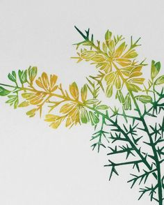 Image result for gorse lino print