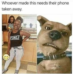 We share 40 fresh black memes photos of the day to making you a lot of humor sense and entertainment. These are the funniest memes pictures make you lol. Funny Black Memes, Stupid Funny Memes, Funny Tweets, Funny Relatable Memes, Funny Posts, Funny Humor, Funny Stuff, Lol, Funny Cute