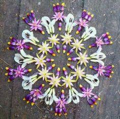 Flower mandala ☽☯☾magickbohemian