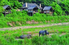 #KrugerNationalPark #hotelssouthafrica