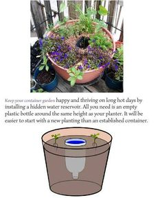1000 images about garden watering systems on pinterest self watering self watering planter - Self watering container gardening system ...