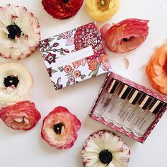 Fragonard discovery perfume sets are a delightful gift or treat  We have a range of different sets in store. Open from 10-2pm today. #buylocalballarat by sweetfern_