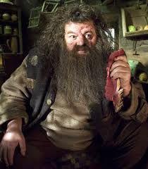 Harry Potter And The Prisoner Of Azkaban Promo Shot Of Robbie Coltrane Harry Potter Characters Harry Potter Costume Rubeus Hagrid