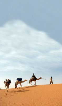 Desert, Adrar - Mauritania