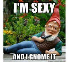 I gnome it