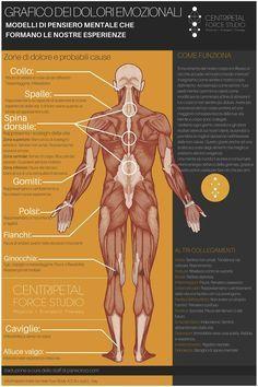 Zone di dolore e probabili cause