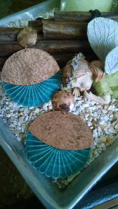 Aros en cobre y crin calipso Jewerly, Baskets, Outdoor Decor, Crafts, Home Decor, Copper, Earrings, Calypso Music, Horsehair