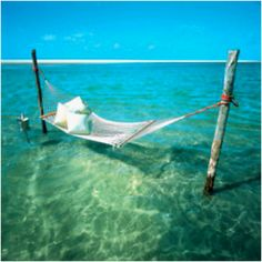 Why lounge by the water when you can lounge above the water? #travel #beach #travel ticker