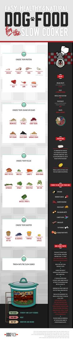 dog food recipes for the slow cooker printable