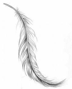 Feder Tattoo – Bedeutung und Vorlagen Feather tattoo – meaning and templates # ideas Tattoo Plume, Feather Tattoo Foot, Feather Tattoo Meaning, Feather Drawing, Feather Tattoo Design, Feather Art, Tattoos With Meaning, Feather Sketch, Arrow Feather