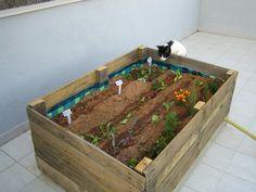 Pequeño huerto para el hogar : iEcologia - ecologia y medio ambiente