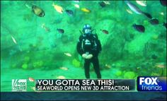 """FOX & FRIENDS """"SeaWorld's 'TurtleTrek' makes waves"""" Check out the underwater interview with animal expert Jack Hanna prior to the grand opening."""