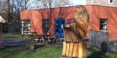 OBS de Paedwizer de UIlebeam owl / books