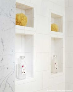 Image detail for -Built-in Niches in Wall of Shower Stall