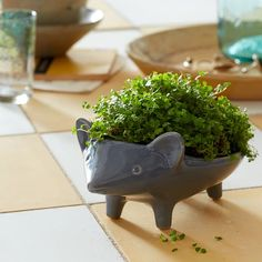 How cute are these?! Ceramic Animal Planters | west elm