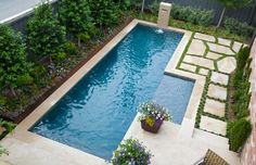 Windsor {University Park} - contemporary - pool - dallas - TATUM BROWN CUSTOM HOMES