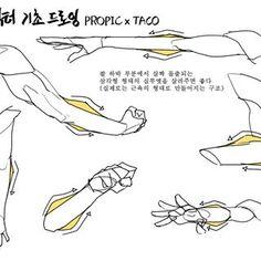 타코작가 (@taco1704) • Ảnh và video trên Instagram Reference Manga, Body Reference Drawing, Body Drawing, Anatomy Reference, Drawing Skills, Drawing Lessons, Drawing Poses, Art Reference Poses, Drawing Tips