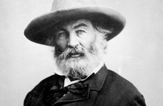 Walt Whitman (1819-1992), grand poète américain (Leaves of grass - Feuilles d'herbe).