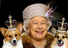 I Love Corgis- Queen Elizabeth of England and two of her Corgis. She looks so happy in this photo.