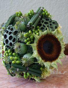 Hypericum, plucked sunflower head, lotus pods, poppy pods, horsetail stems?