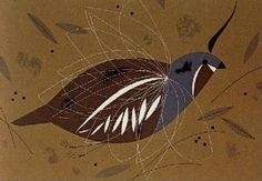 """Mountain Quail -Time bomb of the timeless sierra, the Mountain Quail has a proximity fuse set for three feet. He explodes like a cubist painting of a Mountain Quail exploding, quickening the pulse, rocketing stroboscopically into the chaparral. For him a cliché was coined: """"He went thataway."""" Plumed like a drum major, he avoids parades but dry cleans his uniform and freshens up by taking a dust bath. A family man, he believes in large ones – fifteen, more or less."""
