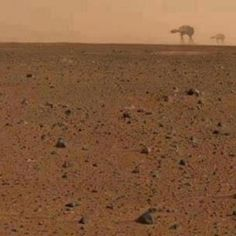 More to Mars than meets the eye.