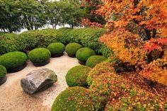 Assortiment de Boules : Jardin rustique par Solitair