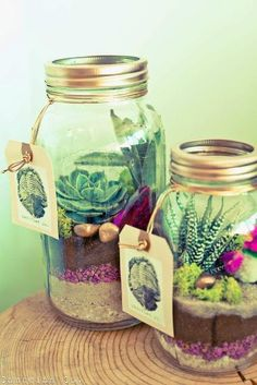 Clever ways to add seem green in your home. These mason jar terrariums are low-maintence and are great gift ideas.