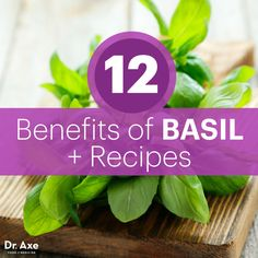 12 Benefits of Basil + Recipes Basil benefits - Dr. Nutrition Education, Holistic Nutrition, Health And Wellness, Best Herbs For Anxiety, Basil Health Benefits, Adrenal Health, Basil Recipes, Healing Herbs, Holistic Healing