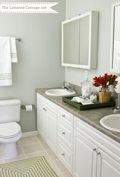 New Bath Tray Styling Wall Colors Ideas Bathroom Vanity Tray, Master Bathroom, Washroom, Bathroom Paint Colors, Interior Paint Colors, Sherwin Williams Gray, North Star Sherwin Williams, Grey Bathrooms, Bathroom Modern