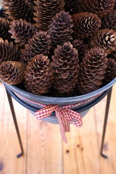 I collect all sizes of pine cones- large to miniature and place them in the fireplace, vases and jars. I've added them to wreaths and made Christmas decorations...the possibilities are endlesss...