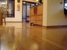 Công dụng của sàn gỗ tự nhiên cho cuộc sống