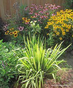 Perennial garden area