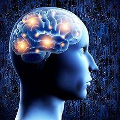 Wie hoch ist Deine Emotionale Intelligenz?