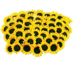 Cynthia I keep seeing you posting sunflower pictures. It's not necessary for you to get sunflowers fake ones would be just as nice but costco delivers flowers in bulk for great prices. I'm buying the baby breath for the reception and center pieces